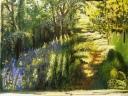 Bluebell Walk III - Pastelkreide auf 50 x 65 cm Pastelpapier
